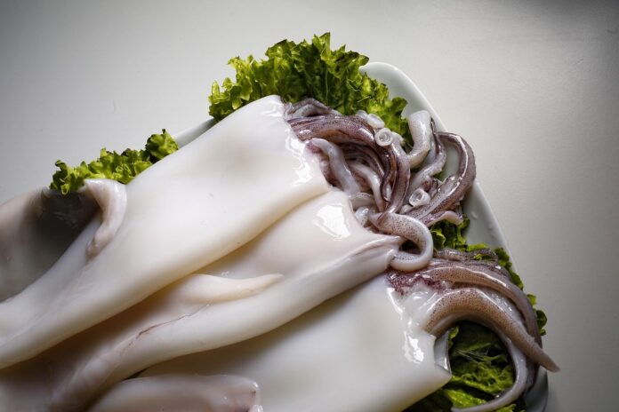 Calamaro in umido al pomodoro la ricetta facile